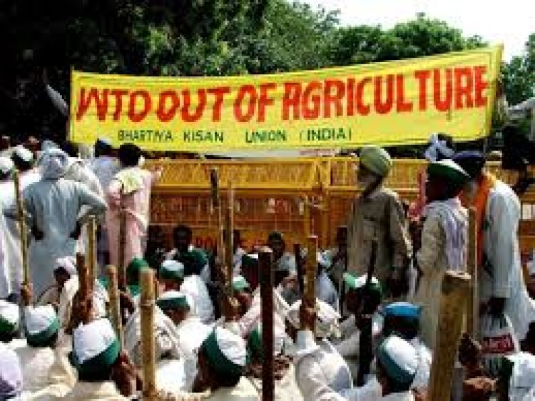 Farm Subsidies and Why We Need Effective Disciplines in the WTO