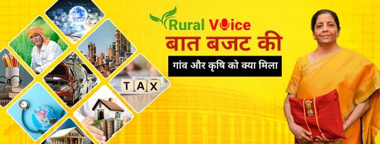 Budget 2021-22 and Rural Development: Implementation is the Key
