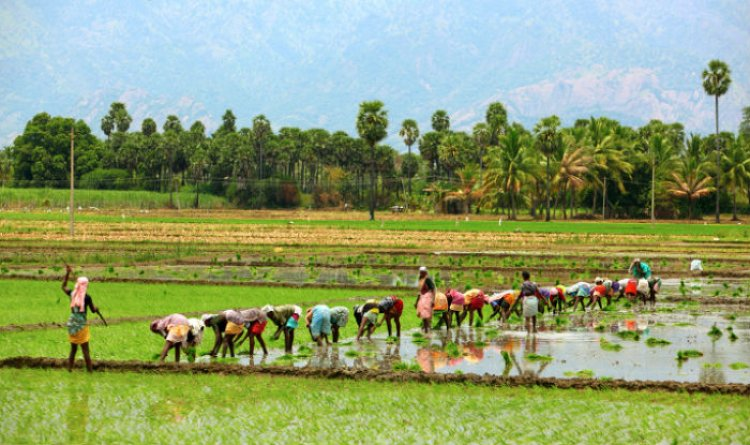 Need for resilient agriculture to tackle the uncertainties of the future