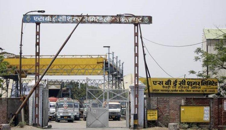 UP sugar mills still owe Rs 4,900 crore in farmers' outstanding