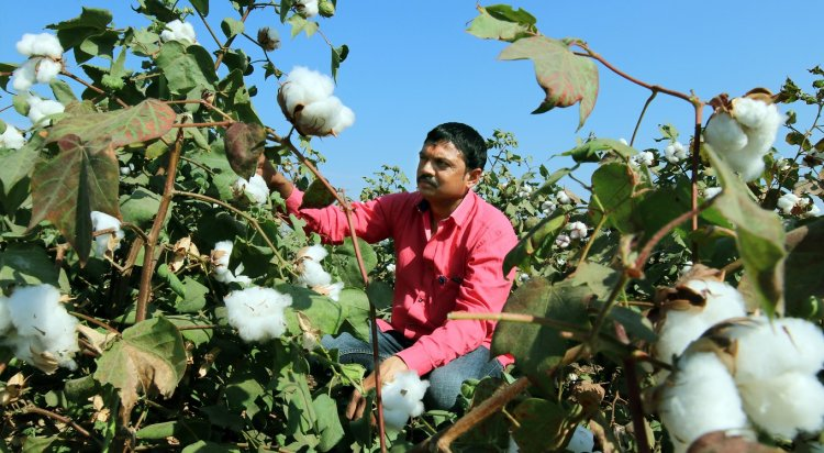 Adaptation of scientific agriculture practices will drive global demand towards Indian cotton farmer