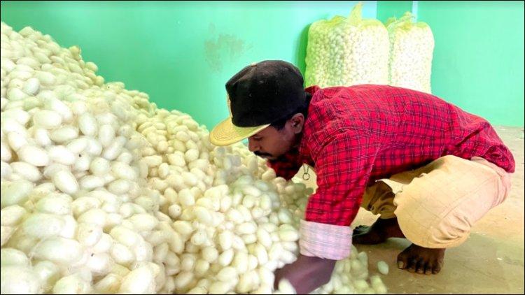 ReshaMandi eyes expansion of silk portfolio in Delhi