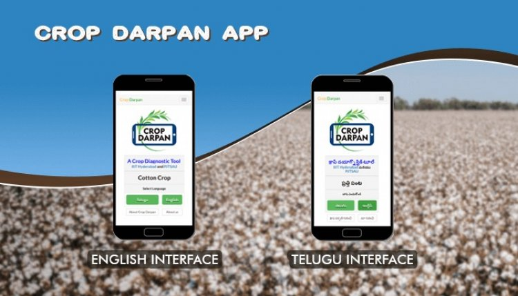 IIIT Hyderabad develops Crop Darpan app to address insect and pest problems in crops