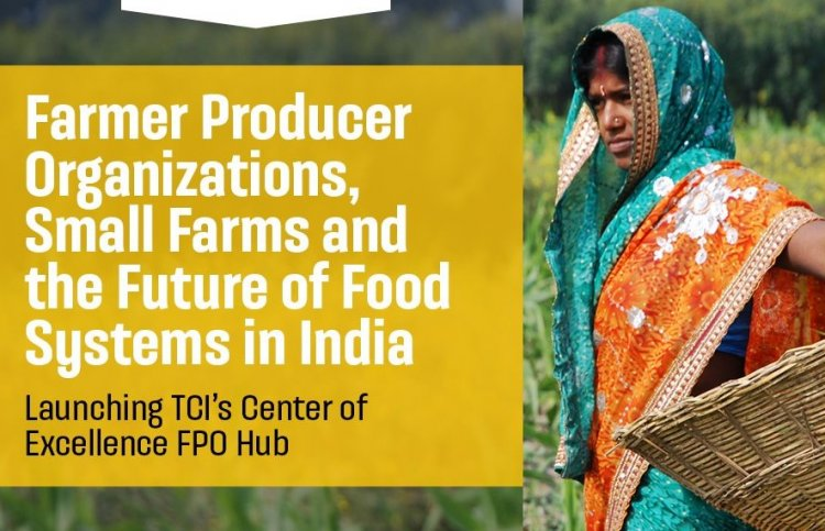 Tata-Cornell Institute launches hub for FPOs to empower smallholder farms in India