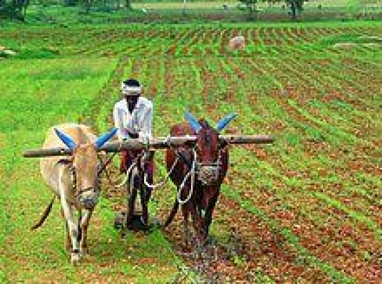 Samunnati launches Annadata Suraksha Abhiyaan to crowdsource funds and insure India's smallholder farmers