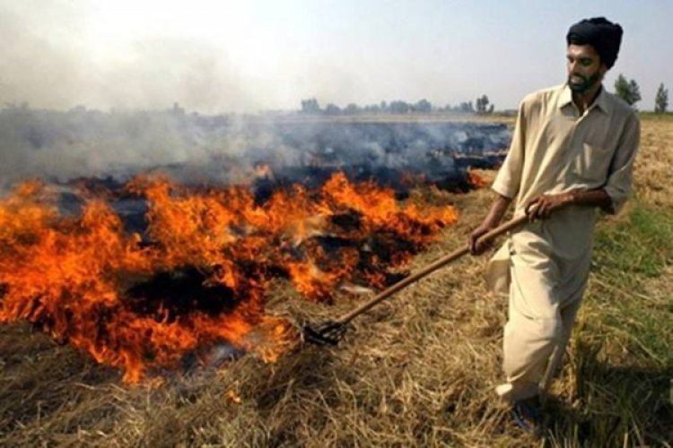 Roots Foundation to train nearly 50,000 farmers of Punjab and Haryana to tackle stubble burning